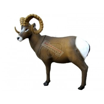 Rocky Mountain Sheep SRT