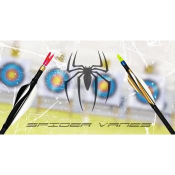 Sachet 60 plumes Spider Vanes Invictus