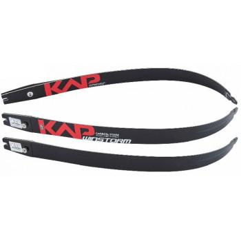 Branches KAP Winstorm Carbon