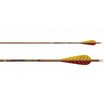 Pack 6 Flèches Easton Axis Carbon Traditional Plumes Nat
